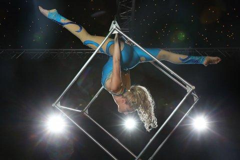 Kat - Aerial Performer